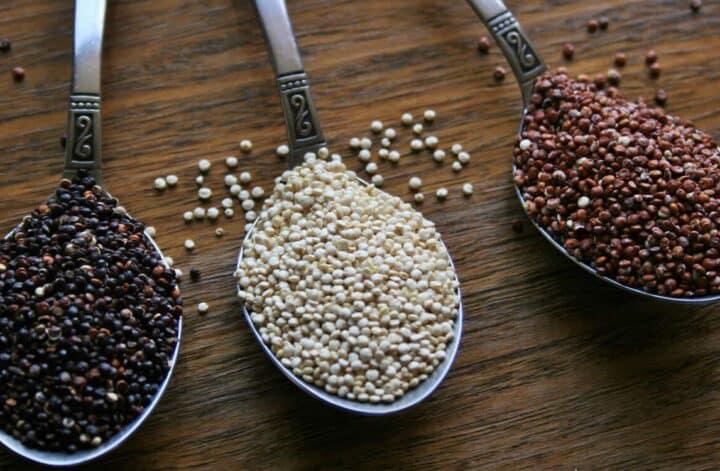 la quinoa engorda
